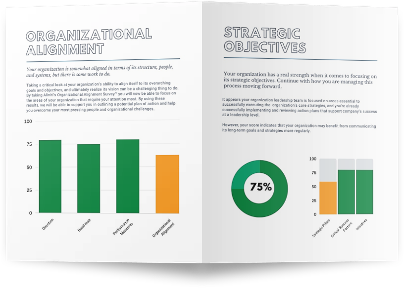 Organizational Alignment Survey Mockup